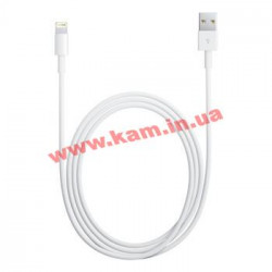 Кабель Apple Lightning to USB 2.0 (0.5 m, for iPod/ iPhone) (ME291ZM/A)